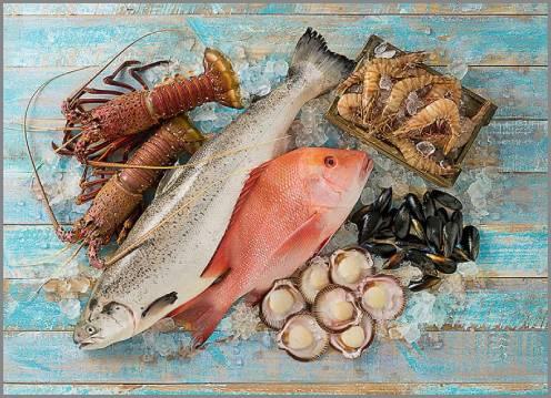 https://admin.seafood.media/cm/photolib/images/download/65668_496x359_72_DPI_0.jpg