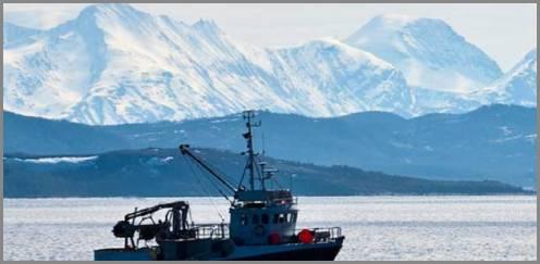https://admin.seafood.media/cm/photolib/images/download/65707_496x243_72_DPI_0.jpg